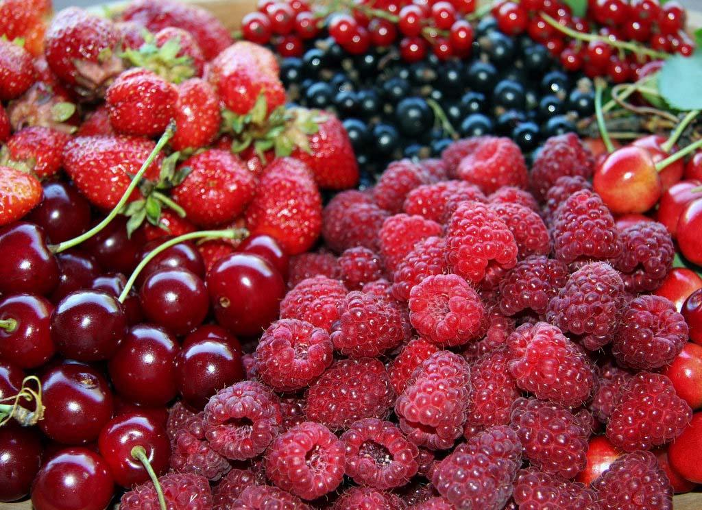 Le proprietà dei frutti rossi