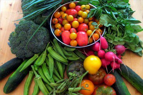 Nuove idee in cucina: come abbinare gli ortaggi