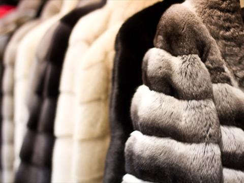 Come pulire le pellicce ecologiche