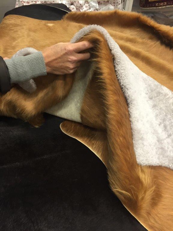 come pulire tappeti e coperte di pelo